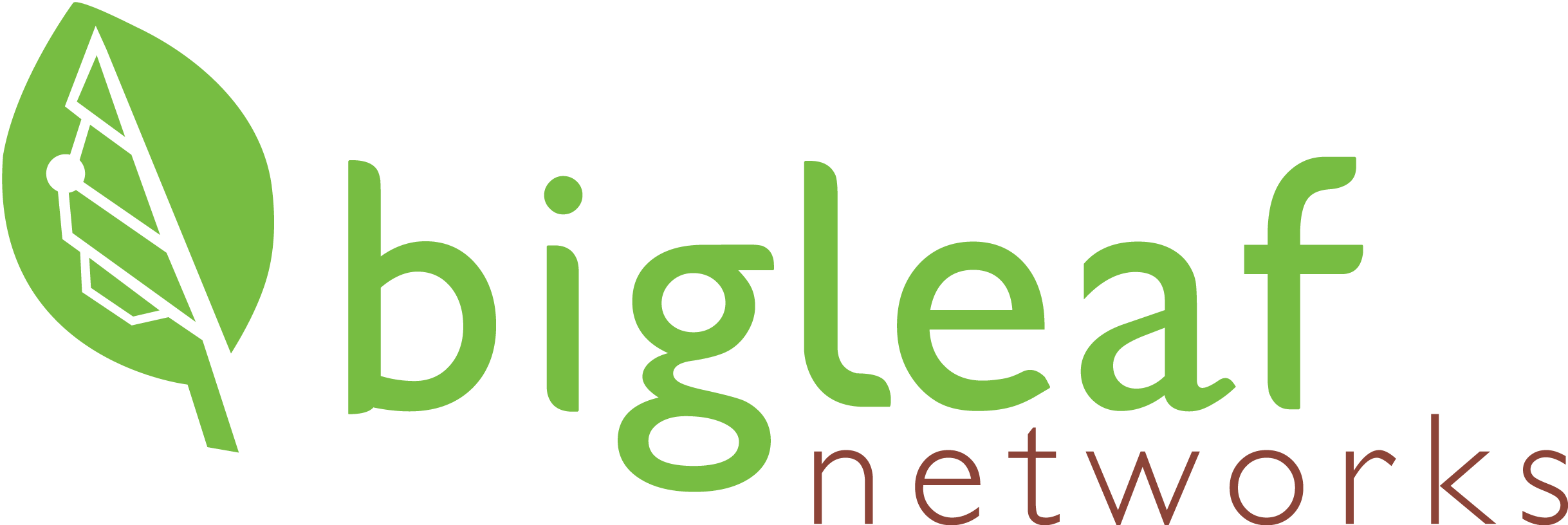 Bigleaf Logo - LARGE-1